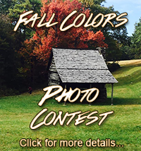 Fall Colors Contest